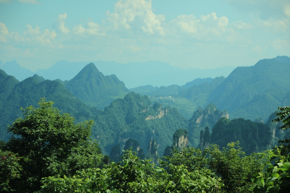 [NEWS] Mountain Partnership Unveils Baseline Data for SDG Indicator15.4.2