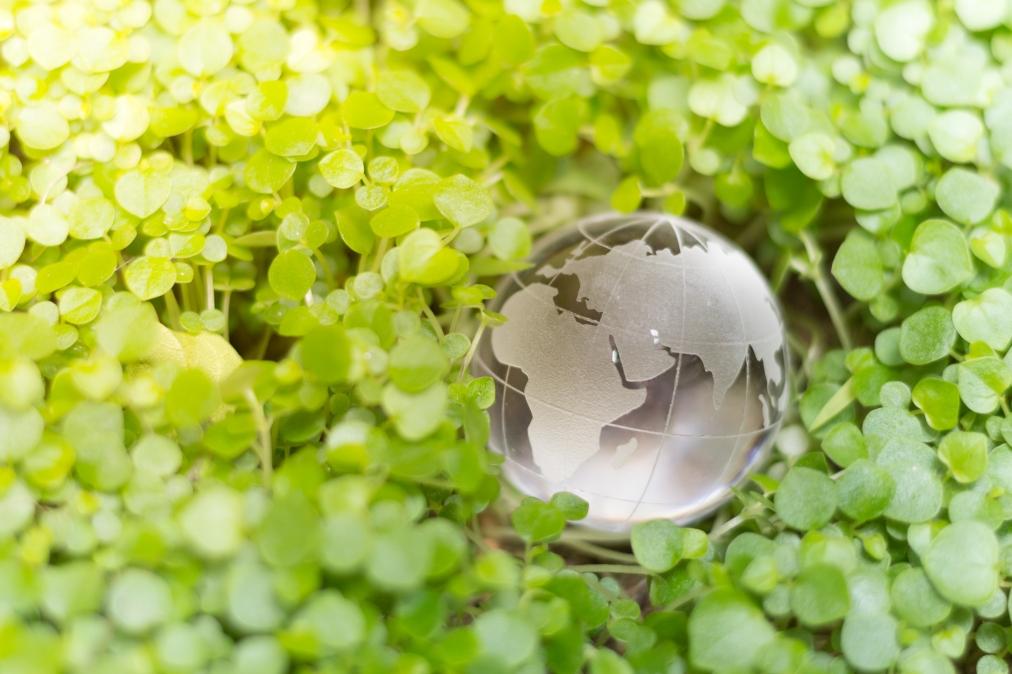 [NEWS] Report Details LAC Progress on SDGs, RemainingChallenges